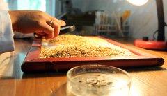 Качество и безопасность зерна и продуктов его переработки