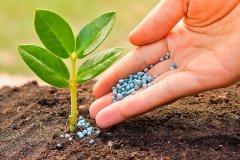 Агрохимия и плодородие почв